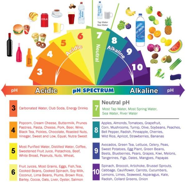 alkaline-diet-chartalkaline-acidic-foods-chart--the-ph-spectrum-nt6cf28o